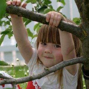 child climbing tree pediatric trauma patient child children kid