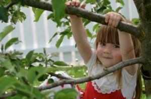 Girl-in-Tree